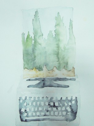 The Cypress Writer, 2013